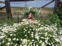 Часова Надежда Викторовна Ромашки, ромашки, ромашки цветы. Сижу и гадаю, любишь ли ты.JPG