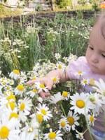 Гладкова Альбина Фаниловна. Малыш в ромашках.jpg