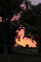 Поликарпова Светлана Андреевна- малиновый закат с видом на часовню.JPG